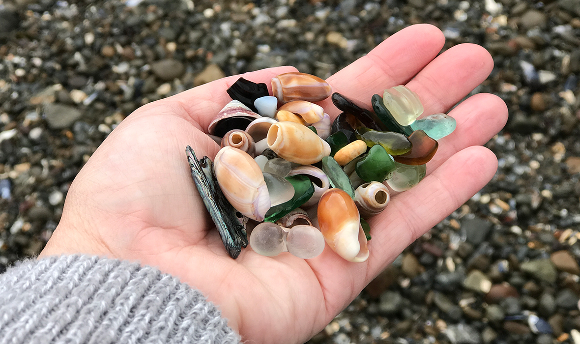 A Handfull Of Sea Glass and Shells From Glass Beach